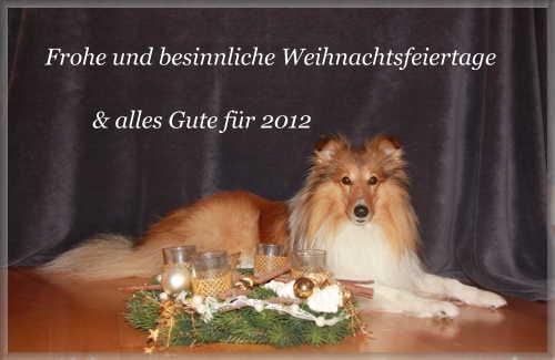 An den Beitrag angehängtes Bild: http://www.lucky-sheltie.de/Bilder/Weihnachtsgrusse_2011.JPG